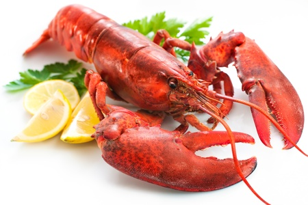 lobster dinner: Lobster with parsley and lemon slices over white