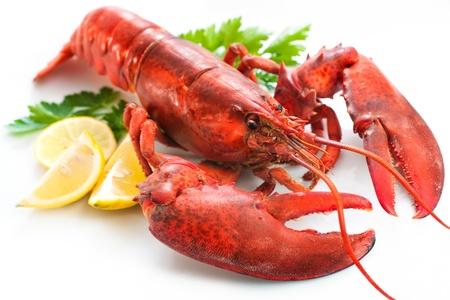 Lobster z pietruszką i plasterkami cytryny na białym
