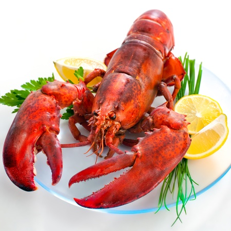 Lobster with parsley and lemon slices over white