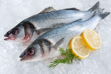 Seabass (Dicentrarchus labrax) on ice at the fish market  photo