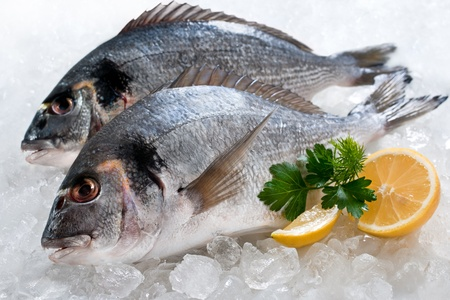 bream: Gilthead (Sparus aurata) on ice at the seafood booth  Stock Photo