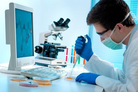 tecnico laboratorio: T�cnico de laboratorio inyecci�n de l�quido en una placa de microtitulaci�n Foto de archivo