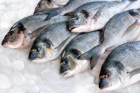 Sparus aurata Dorade sur la glace sur le stand de fruits de mer Banque d'images
