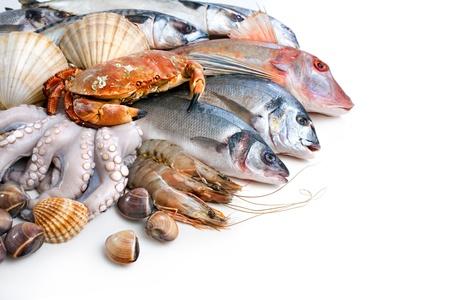 fish store: Pescado fresco de los peces y otros mariscos Foto de archivo