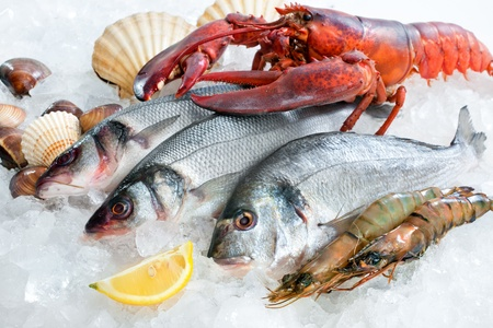 gilt head: Fresh catch of fish and other seafood on ice