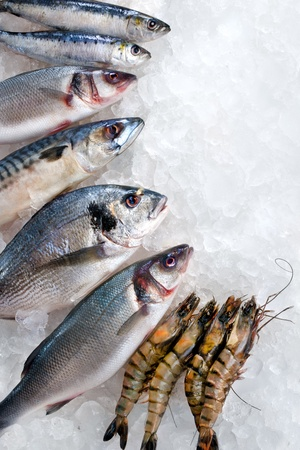 fish selling: Seafood on ice at the fish market