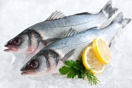 seabass: Lubina Dicentrarchus labrax sobre hielo en el mercado de pescado Foto de archivo