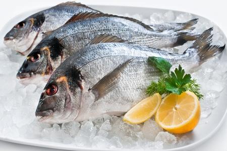 Sparus aurata Dorade sur la glace sur le stand de fruits de mer