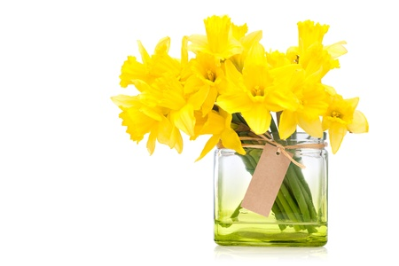 arrangement: yellow daffodils in a vase isolated on white