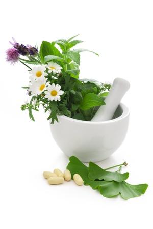 gingko: Healing herbs in mortar  Alternative medicine concept
