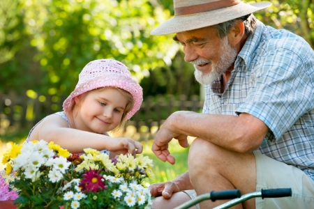 family gardening: Happy grandfather with his granddaughter  in the garden