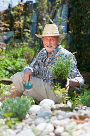 yard work: Portrait of senior man gardening Stock Photo