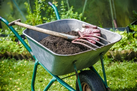front  or back  yard: Pitch fork and gardening gloves in wheelbarrow full of humus soil