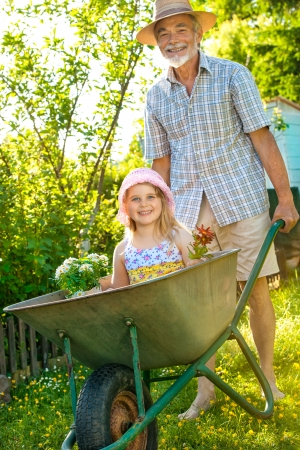 wheelbarrow: Grandfather giving granddaughter ride in wheelbarrow in the garden