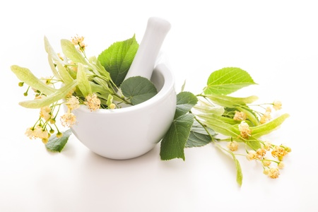 homeopathic: Flowers of linden tree in a mortar  Alternative medicine concept