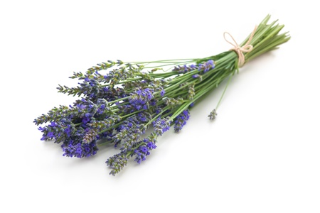 detail of bunch: bunch of lavender flowers on white background Stock Photo