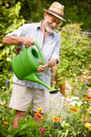 maintaining: Senior man watering the flowers in  the garden