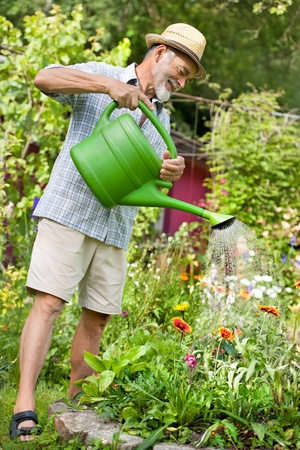 Senior man watering the flowers in  the garden photo