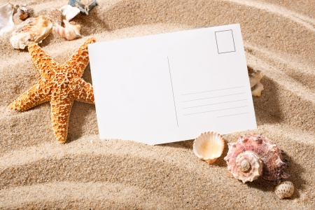 contact sheet: holiday beach concept with shells, seastars and an blank postcard
