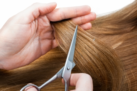 hands of hairdresser cutting woman's  hair isolated on white photo