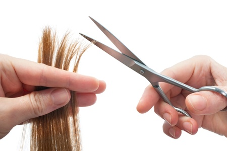 trims: hands of hairdresser cutting woman's  hair isolated on white
