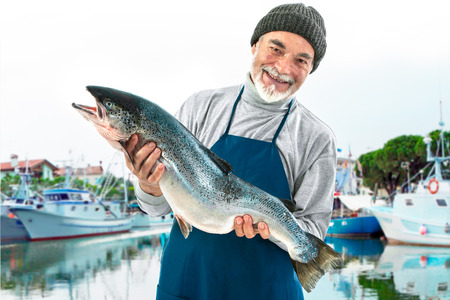 fishmonger: Fisher holding a big atlantic salmon fish in the fishing harbor