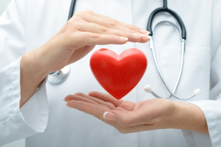 organ donation: Female doctor with the stethoscope holding heart