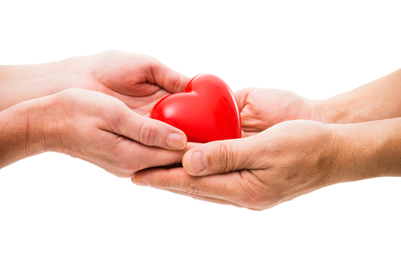volunteer: Red heart at the human hands isolated on white