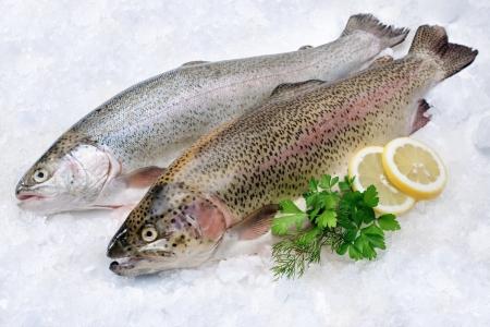 생선 시장에서 얼음에 신선한 허브와 함께 무지개 송어