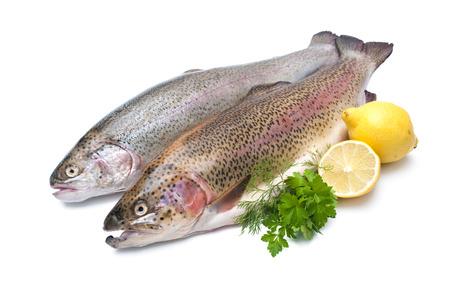 pesquero: La trucha arco iris con las hierbas frescas aisladas sobre fondo blanco