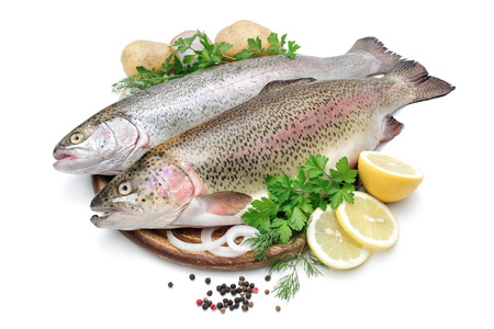 Rainbow trout with fresh herbs isolated on white background Stok Fotoğraf