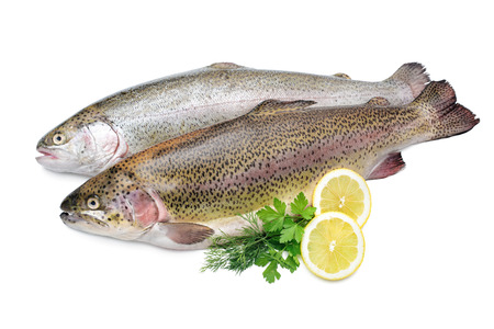 rainbow fish: Rainbow trout with fresh herbs isolated on white background Stock Photo