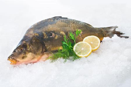 pez carpa: Peces carpa común fresco con limón en el hielo Foto de archivo