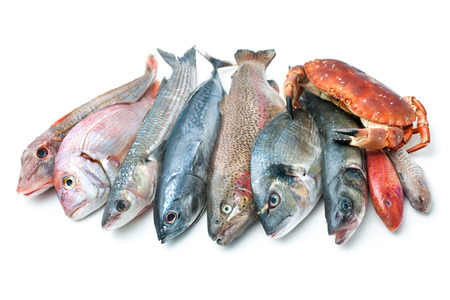 fish selling: Fresh catch of fish and other seafood isolated on white background Stock Photo