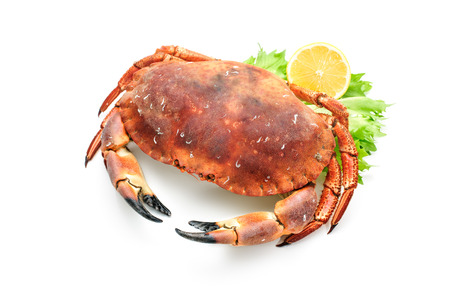 aquatic herb: red boiled crab isolated on white background