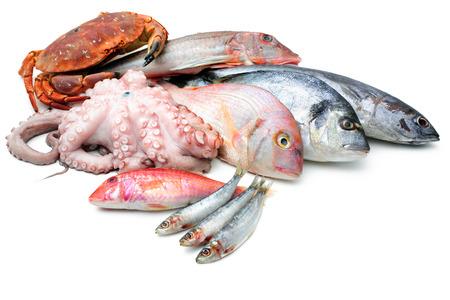 흰색 배경에 고립 된 물고기 및 기타 해산물의 신선한 캐치