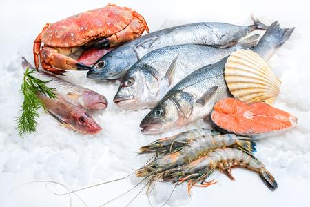 Mariscos en el hielo en el mercado de pescado Foto de archivo - 26036938