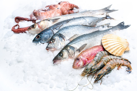 Mariscos en el hielo en el mercado de pescado