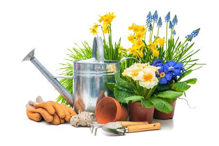Tuingereedschap en bloemen geïsoleerd op wit met een kopie ruimte Stockfoto - 26703924
