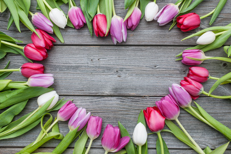 Empty frame of fresh tulips arranged on old wooden background with copy space for your message photo
