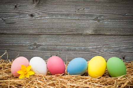 eater eggs on old wooden background with copy space for your message photo