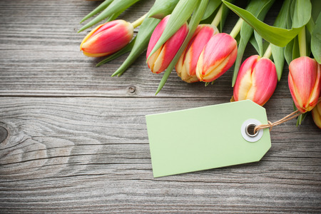 fresh tulips and tag with copy space on wooden background photo