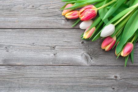 Frische Tulpen mit Kopie Platz auf Holzuntergrund Standard-Bild - 26963623