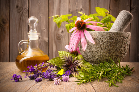 Healing herbs with mortar and bottle of essential oil on wood Stockfoto