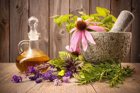Plantes médicinales avec du mortier et une bouteille d'huile essentielle sur bois Banque d'images - 31259821