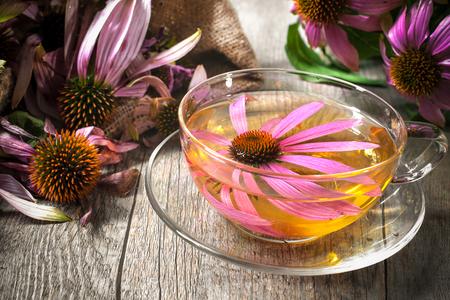 Echinacea purpurea. Cup of Echinacea Tee auf Holztisch