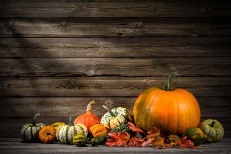Thanksgiving day herbstlichen Stillleben mit Kürbissen auf alten Holz Standard-Bild