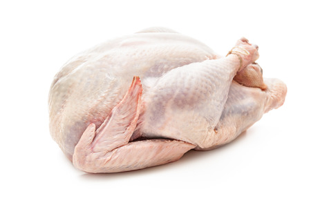 raw chicken: Uncooked turkey isolated on white background