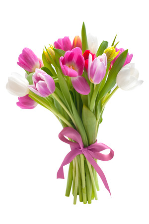 bouquet fleur: Bouquet de tulipes au printemps fleurs isol� sur fond blanc