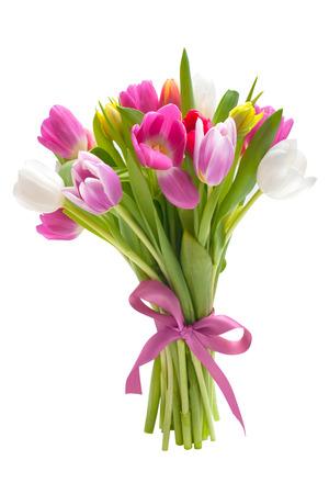 flores moradas: Ramo de tulipanes de la primavera flores aisladas sobre fondo blanco Foto de archivo